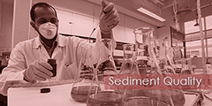 Sediment Quality